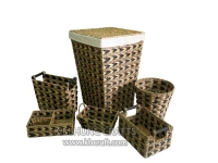 Water Hyacinth Combination Set WF0033-6MIX